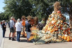 guests viewing fall crop display at West Tennessee REC