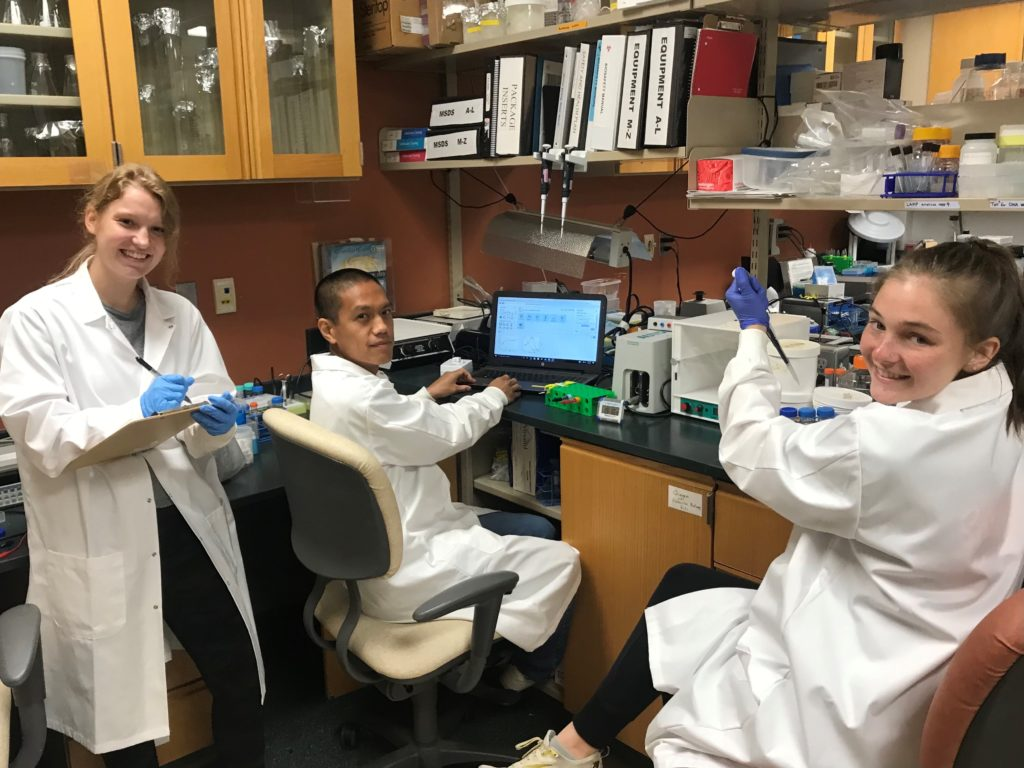Eda lab researchers